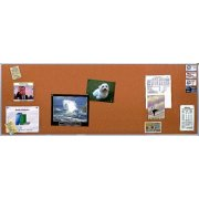 Alum. Frame Cork Board (12'x4')