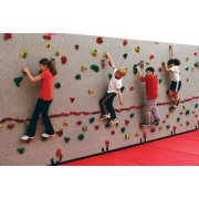 Everlast Standard Climbing-Wall Package (20x8')