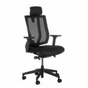 Ergonomic Task Chair with Headrest