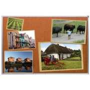 Alum. Frame Cork Board (6'x4')