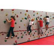 Everlast Standard Climbing-Wall Package (40x8')