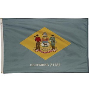 Nylon Outdoor Delaware State Flag