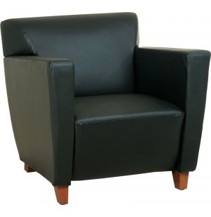 Contemporary Leather Club Chair