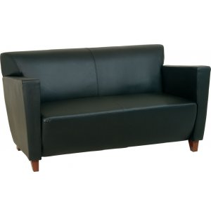 Contemporary Leather Love Seat