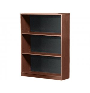 Bookcase with Masonite Back