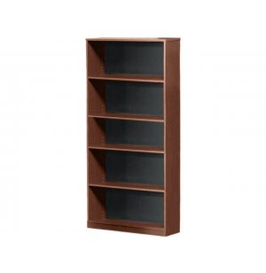 Bookcase with Solid Back
