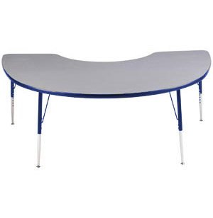 Educational Edge Kidney Activity Table