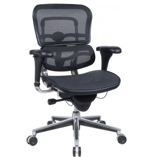 Ergohuman Mesh Office Chair