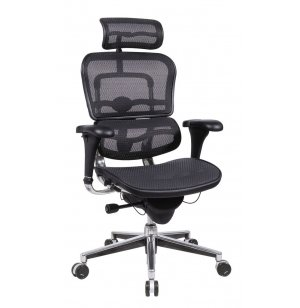 Ergohuman Mesh Office Chair with Headrest