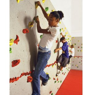 Everlast Standard Climbing-Wall Package