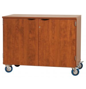 Mobile Storage Cabinet with Doors