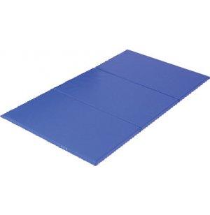 3-Fold Standard Mat Blue