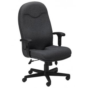 Ortho Executive High Back Office Chair