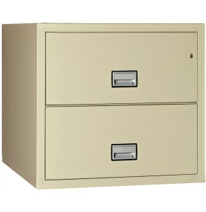 2-Drawer Lateral Fire File, 31