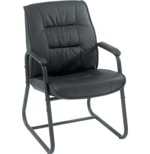 Eurotech Leather Guest Chair
