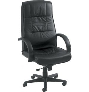 Eurotech High Back Leather Office Chair
