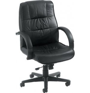 Eurotech Mid Back Leather Chair