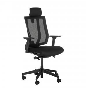 Ergonomic Task Chair with Headrest