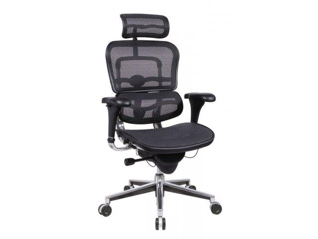 Ergohuman Mesh Office Chair With Headrest